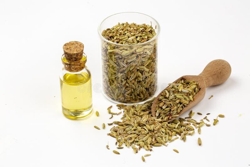 Une bouteille d'huile essentielle de fenouil avec les brindilles de fenouil et les graines de fenouil vertes fraîches à l'arrière illustration libre de droits