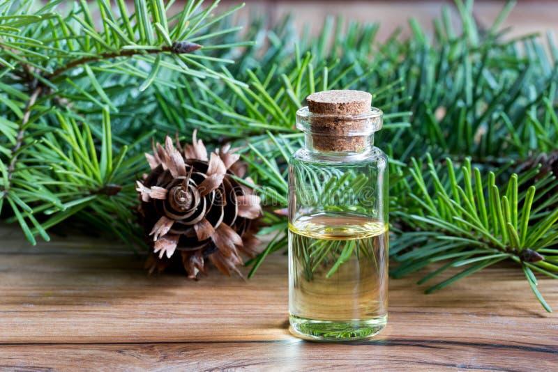 Une bouteille d'huile essentielle de sapin de Douglas avec le sapin de Douglas s'embranche image libre de droits