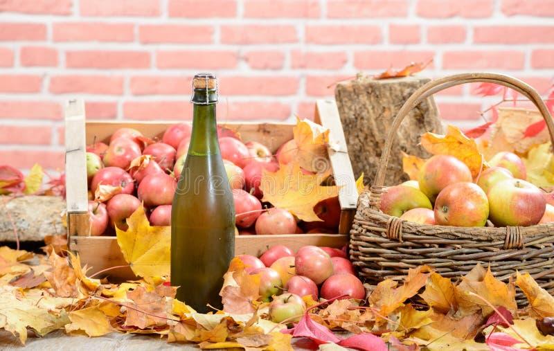 Une bouteille de cidre de la Normandie, avec beaucoup de pommes image stock