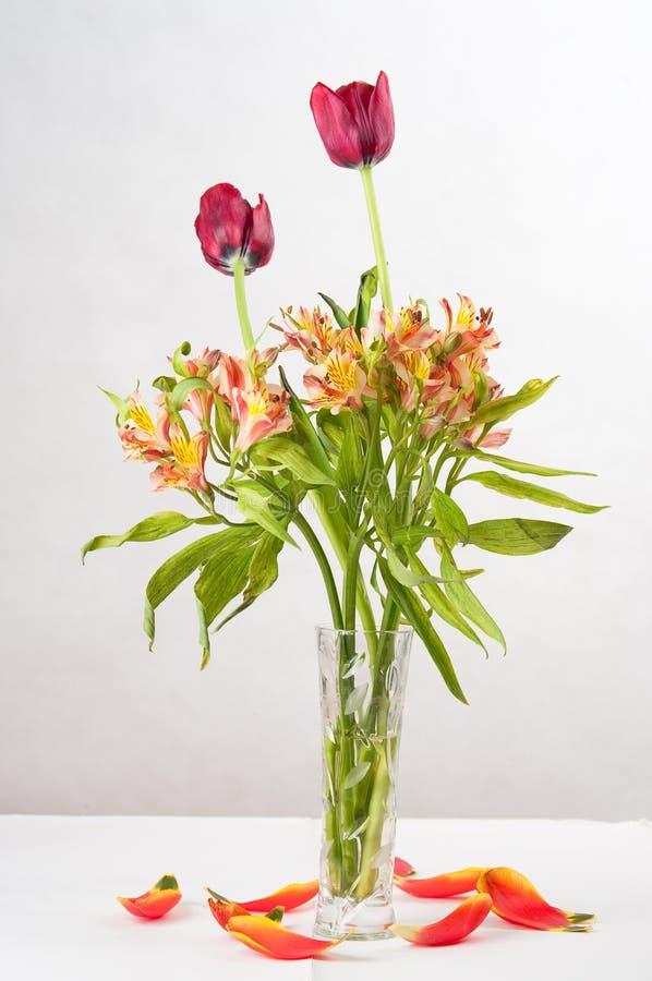 Une bouteille de tulipe photographie stock