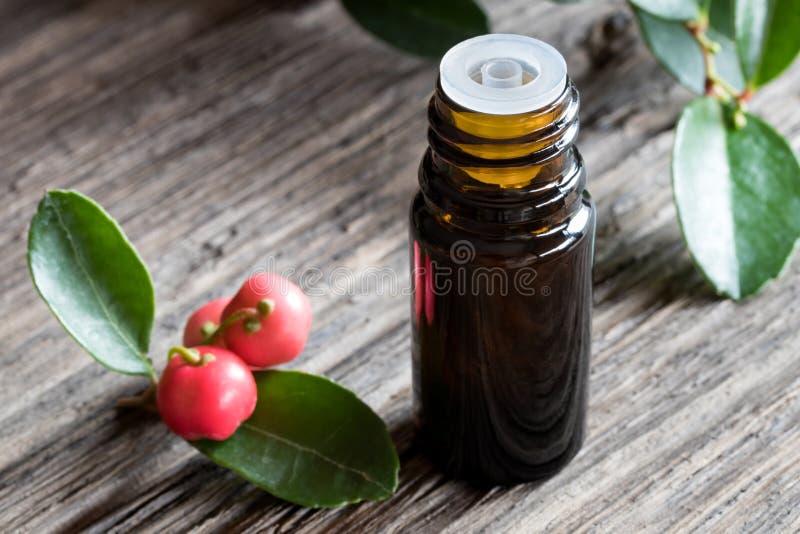Une bouteille foncée d'huile essentielle de gaulthérie sur un backgroun en bois photographie stock libre de droits