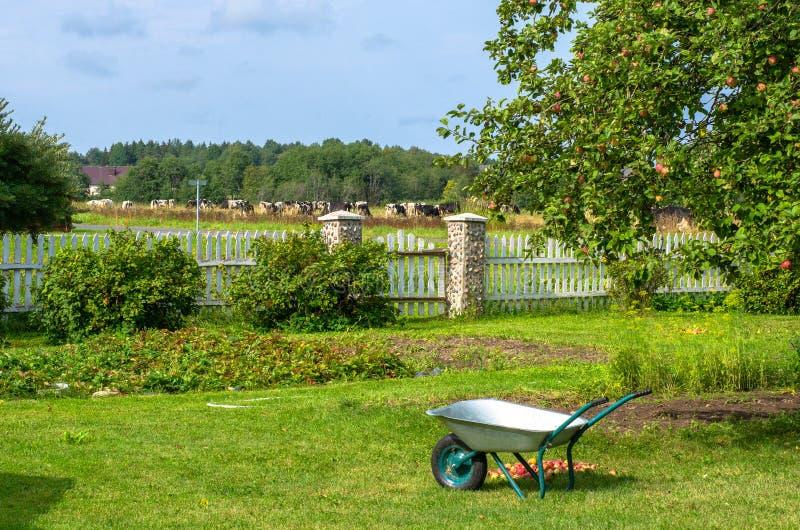 Une brouette de roue dans le jardin par un pommier photographie stock libre de droits