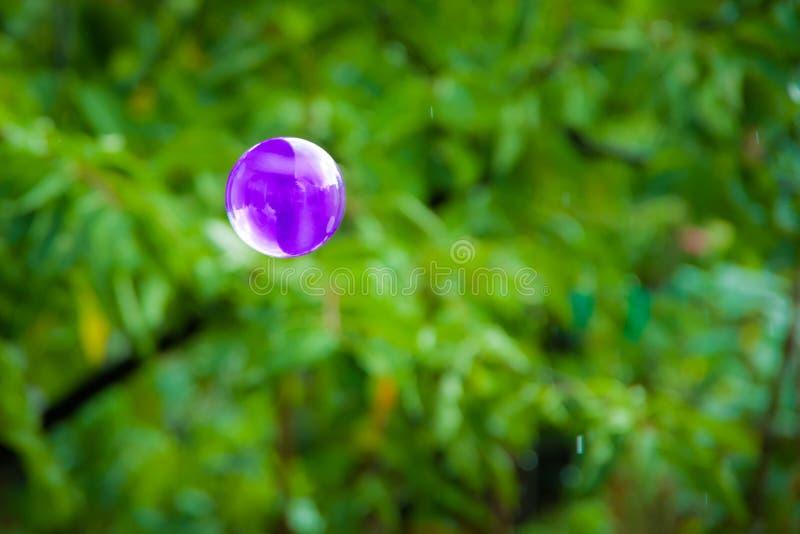 Une bulle de savon pourpre photographie stock