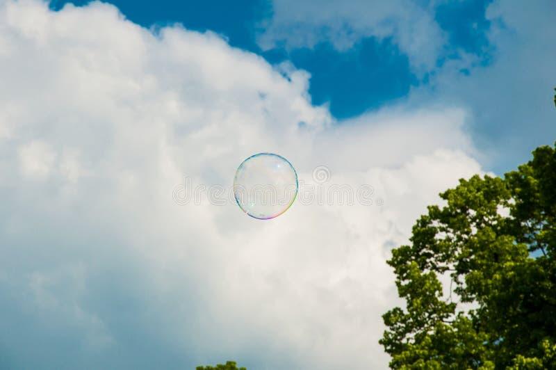 Une bulle de savon ronde sur le ciel bleu, avec des arbres ? l'arri?re-plan image libre de droits