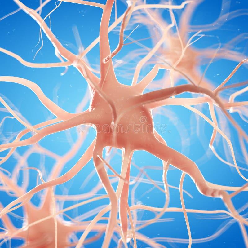 Une cellule nerveuse illustration de vecteur