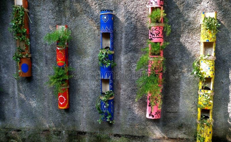 Une certaine usine sur les bambous colorés créatifs image libre de droits