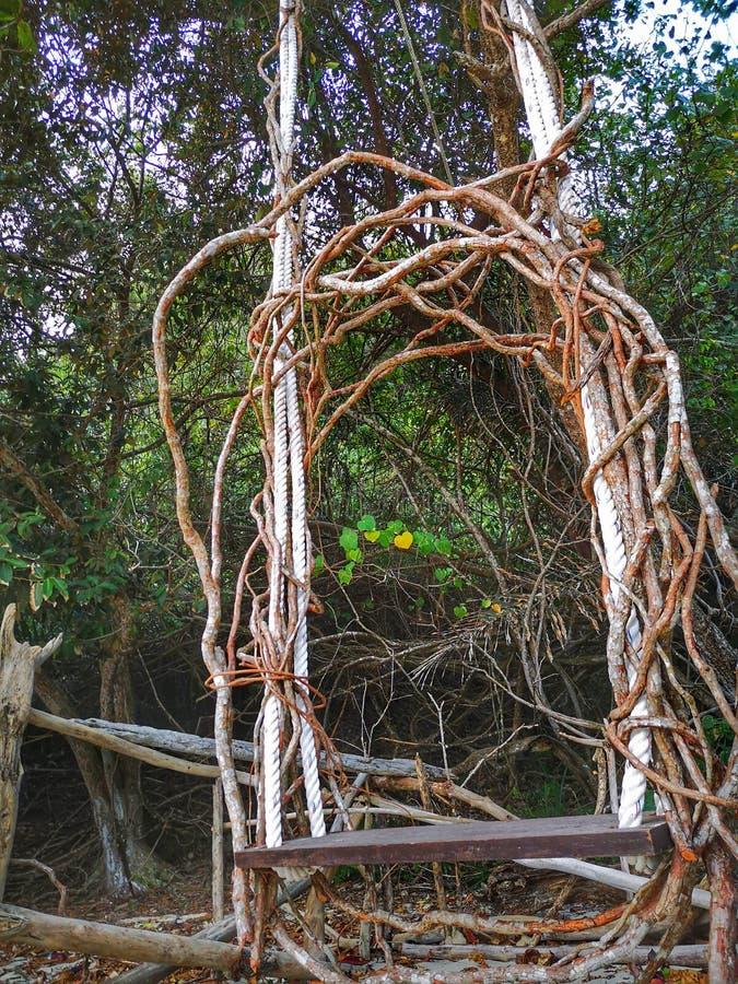Une chaise en bois d'oscillation de racine accrochant sur l'arbre près de la plage sur le bord de mer image libre de droits