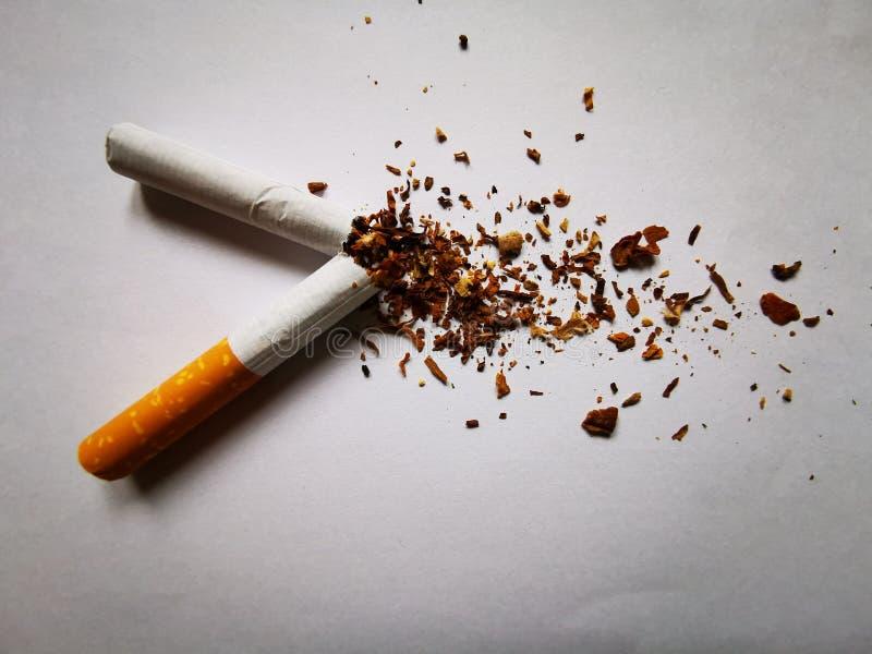 Une cigarette cassée sur la terre blanche photo stock