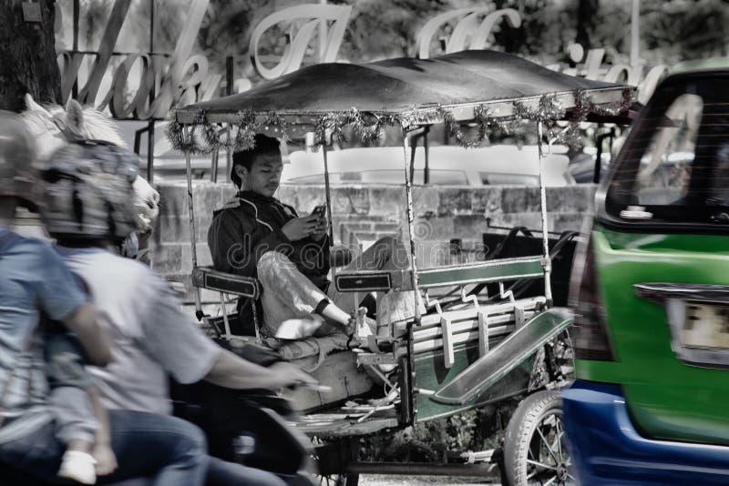 une cloche de cheval sur les périphéries de la ville, jouant un téléphone portable photographie stock
