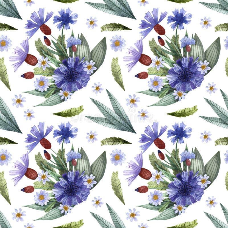 Une collection d'herbes et de fleurs Camomille, plantain, bleuets watercolor illustration stock