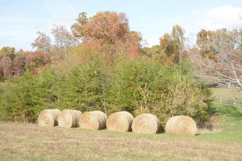 Une collection de balles rondes de constructions de foin à cette ferme de montagne comme la chute prend la prise photos stock