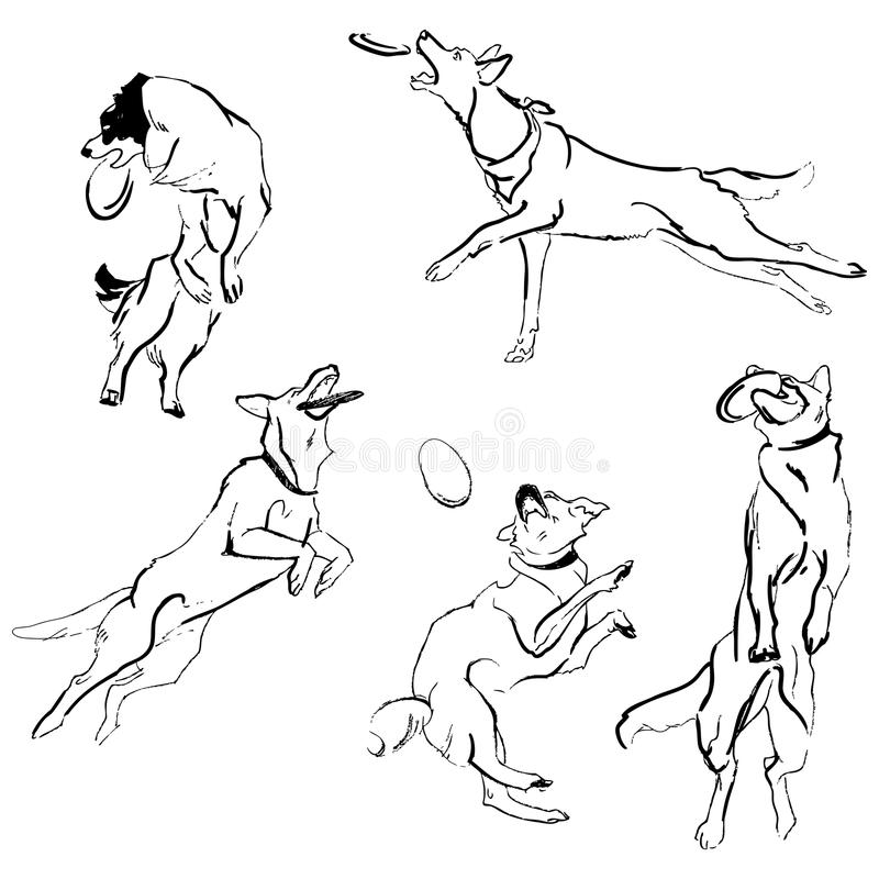 Une collection de chiens de race de croquis Dessins d'isolement de main Concept animal illustration stock
