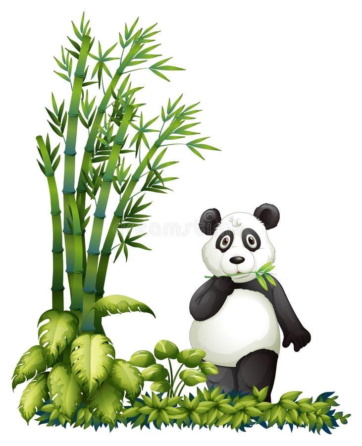 Une consommation de panda illustration libre de droits