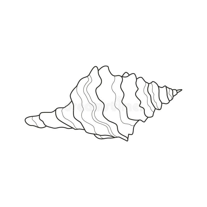Une coquille de mer illustration de vecteur