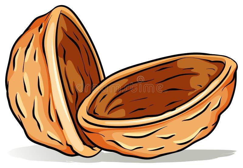 Une coquille de noix illustration stock