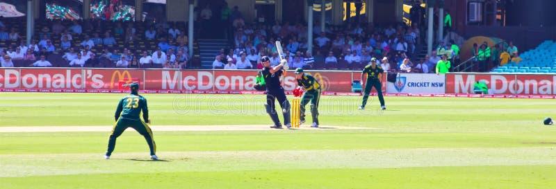 Une correspondance internationale de cricket de jour entre Austra photographie stock libre de droits