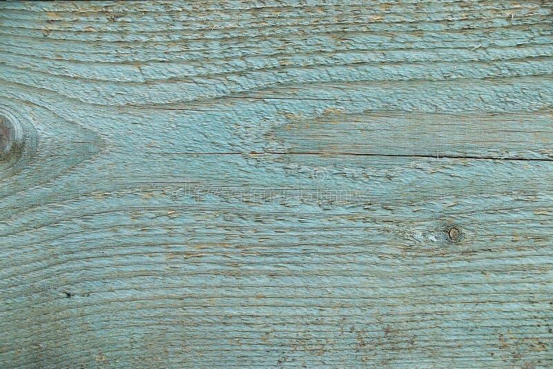 Une coupe d'un tronc en bois avec des fissures et des anneaux annuels pour l'usage comme fond ou texture illustration de vecteur