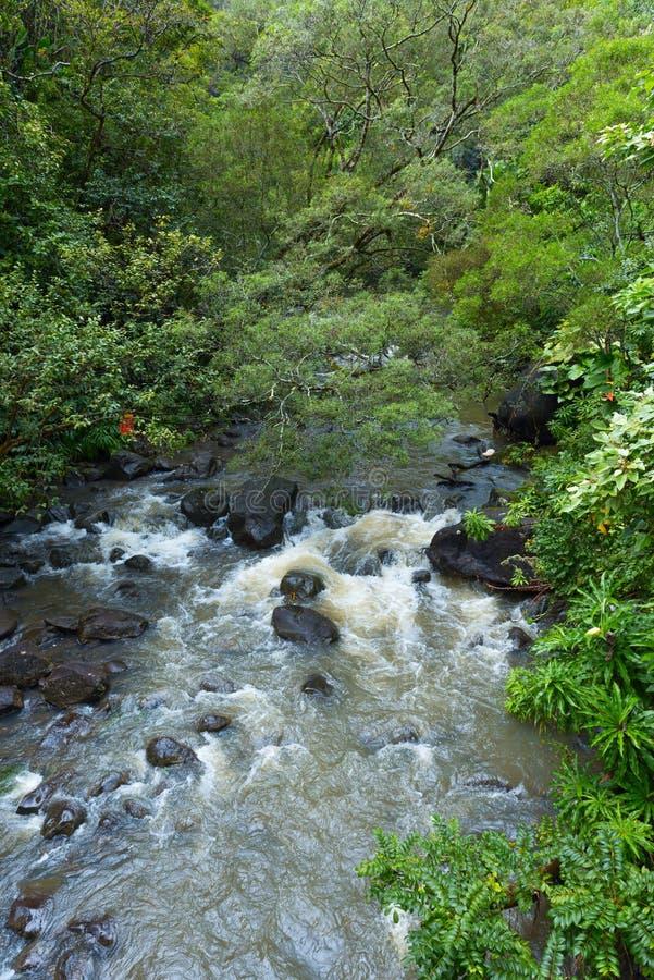 Une crique le long de la route à Hana Maui Hawaï image libre de droits