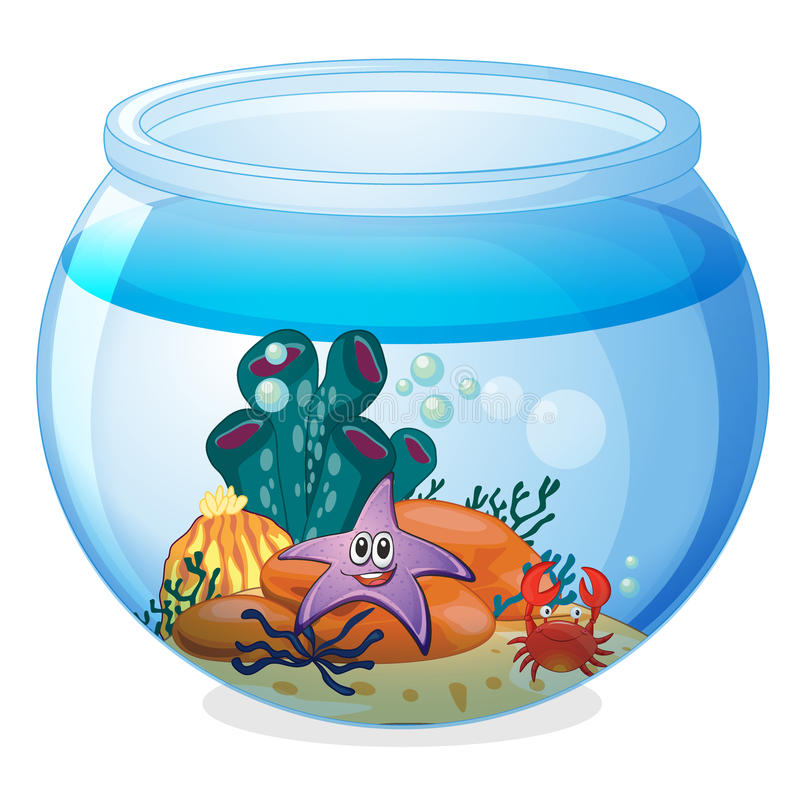 Une cuvette de l'eau et un poisson illustration stock