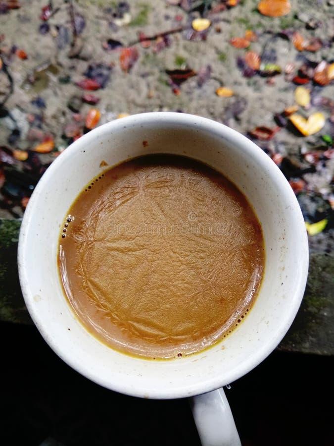 Une cuvette de thé de lait photographie stock libre de droits