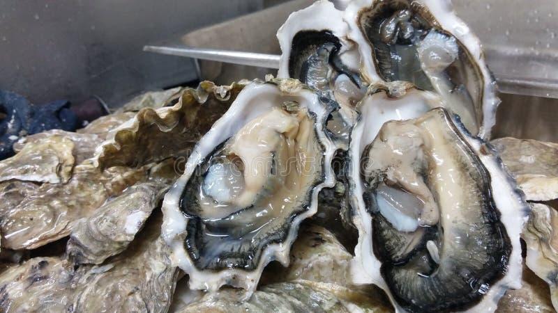 Une demi-douzaine d'huîtres image stock