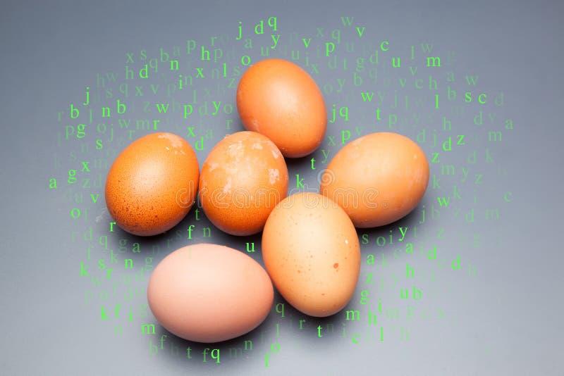 Une demi-douzaine d'oeufs de poulet images libres de droits