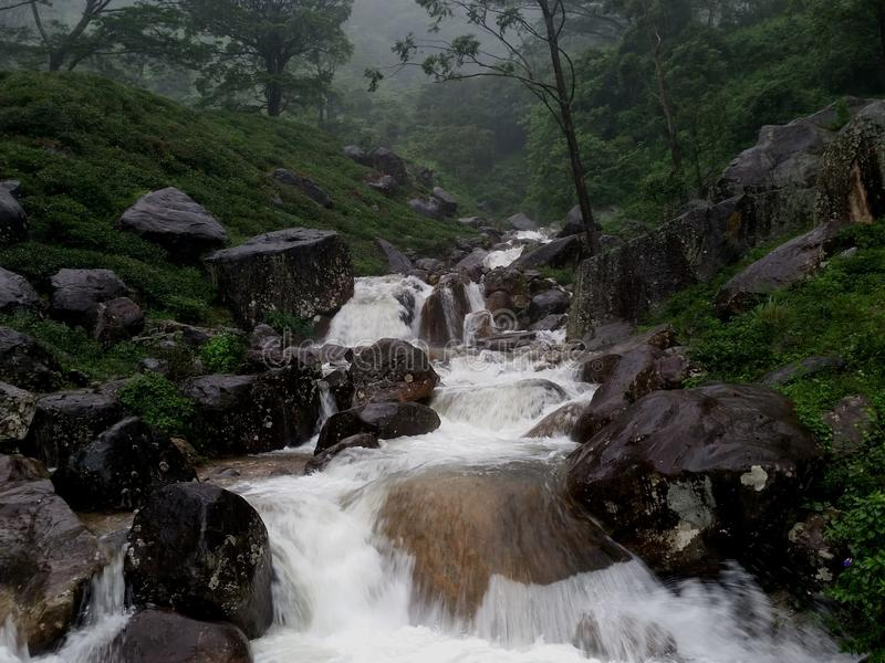 Une des belles cascades au Sri Lanka images libres de droits