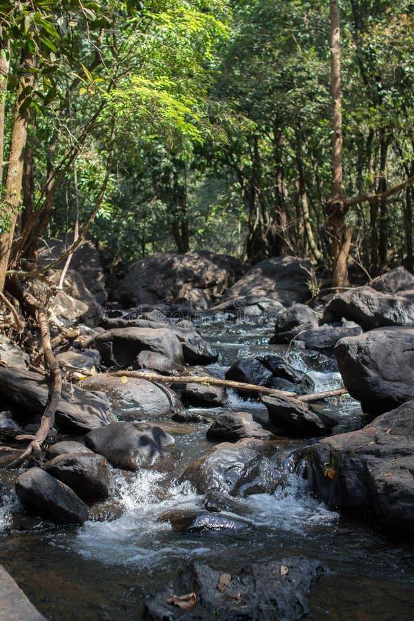 Une des belles cascades pendant l'été de nature de forêt le plus beau images libres de droits