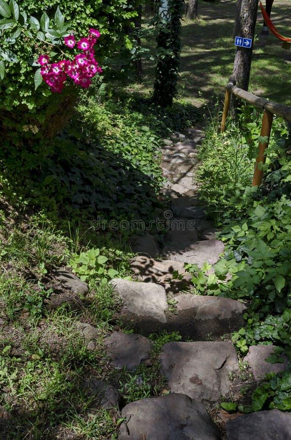 Une entrée ou une porte naturelle décorative avant vers le bivouac public d'enfant dans la forêt conifére près au village de Pasa images stock