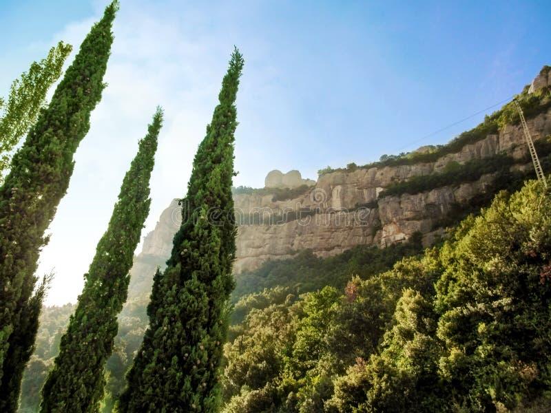 Une falaise rayée dans des montagnes de Montserrat et trois sapins en forme de cône dans le premier plan photos libres de droits