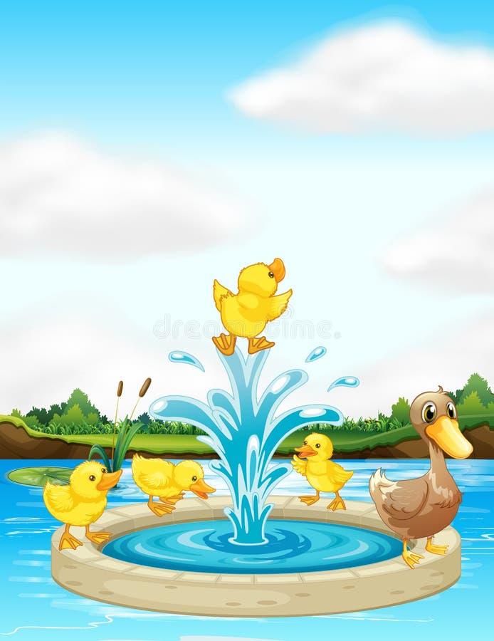 Une famille de canard à la fontaine illustration libre de droits