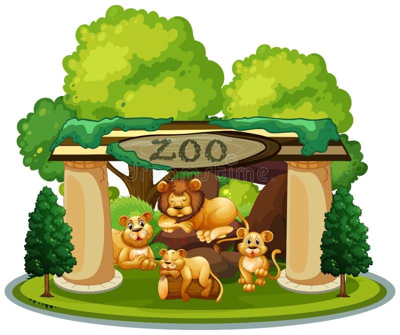 Une famille de lion dans le zoo illustration libre de droits