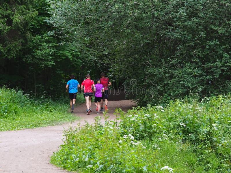 Une famille des coureurs sur un essai de matin en parc image libre de droits