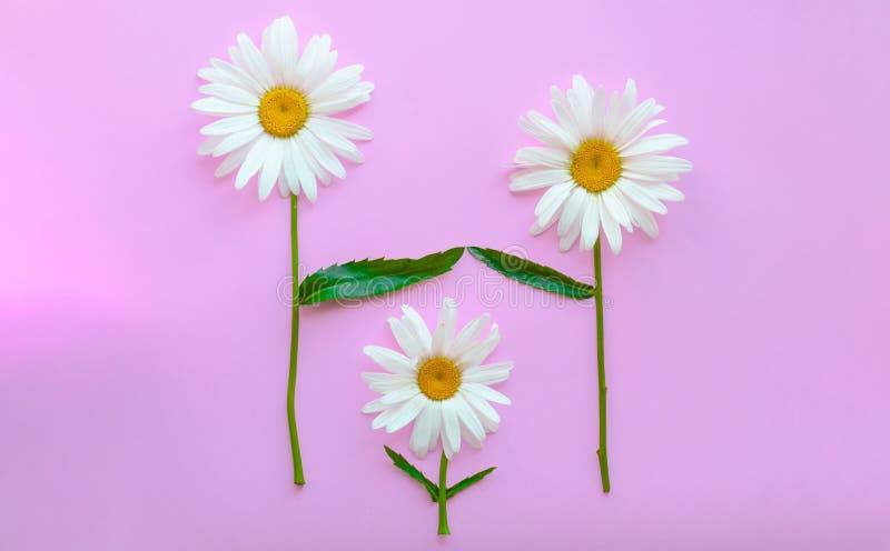 Une famille des fleurs - papa, maman et enfants Parents et enfant Couples dans l'amour Le concept de l'adoption des enfants par m images libres de droits