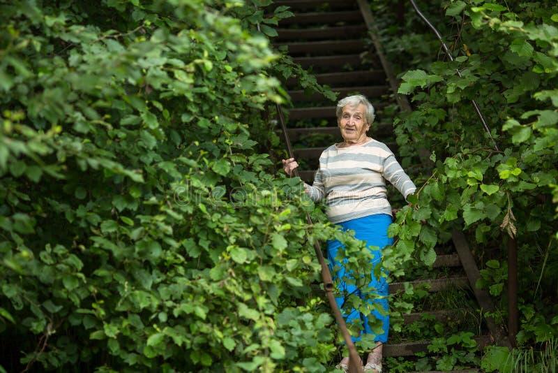 Une femme agée se tient en parc parmi les arbres verts nature image stock