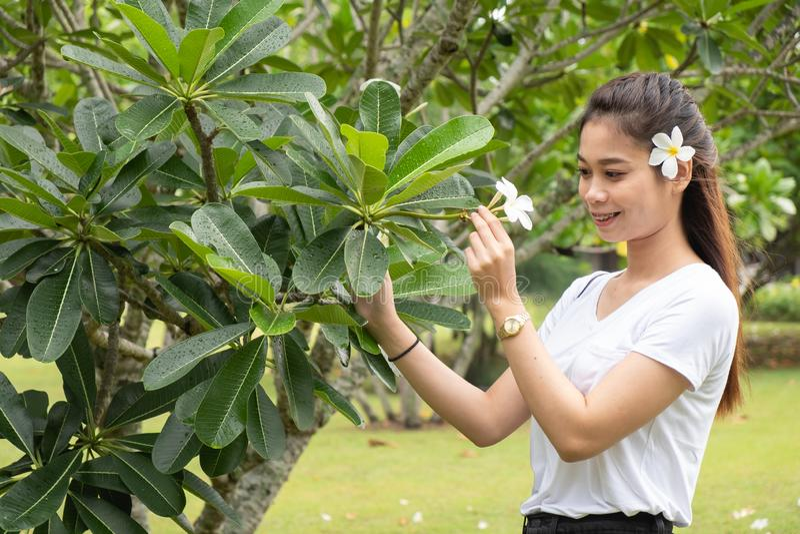 Une femme asiatique en T-shirt blanc avec plumeria sur les cheveux, Belle fille photographie stock libre de droits