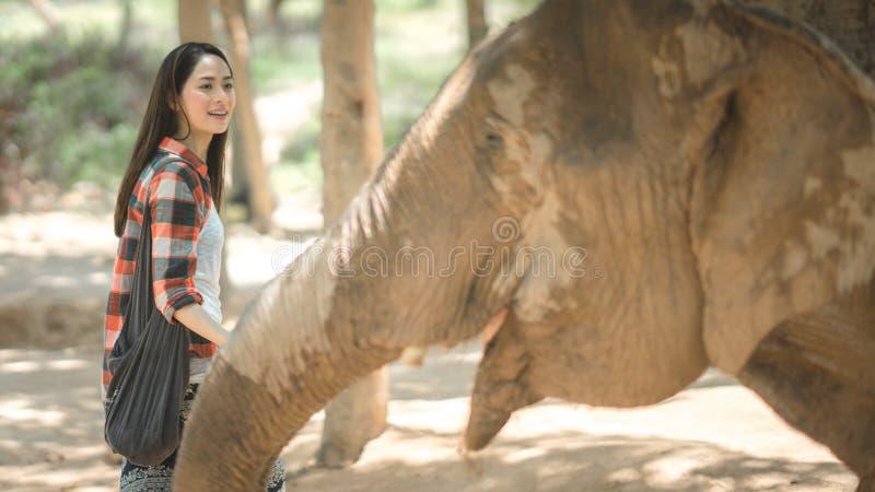 Une femme avec l'éléphant photo stock