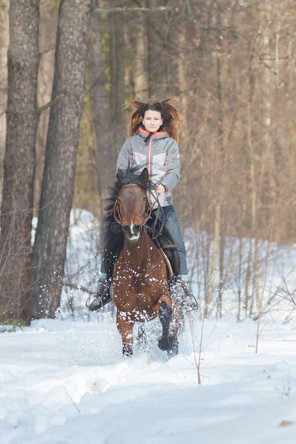 Une femme dans la veste chaude montant un cheval brun photos stock