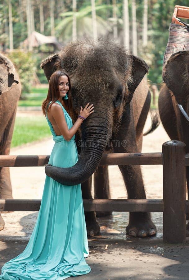 Une femme dans une robe de turquoise et un sourire sur son visage touche un grand éléphant image libre de droits