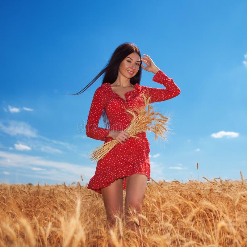 Une femme heureuse qui aime la vie sur le terrain Beauté de la nature, ciel bleu, nuages blancs et champ de blé d'or Mode de vie  image stock