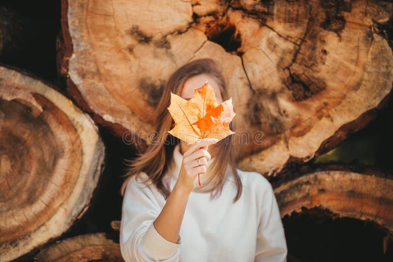 Une femme joyeuse se cache derrière une grande feuille d'érable jaune d'automne sur le fond de bûches de bois dans la nature Clos photos stock