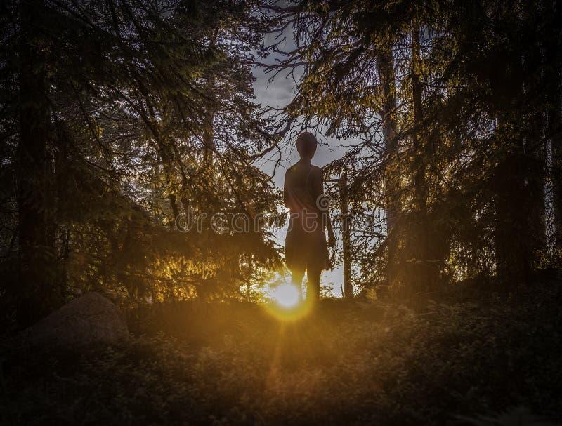 Une femme observant le coucher du soleil photo stock