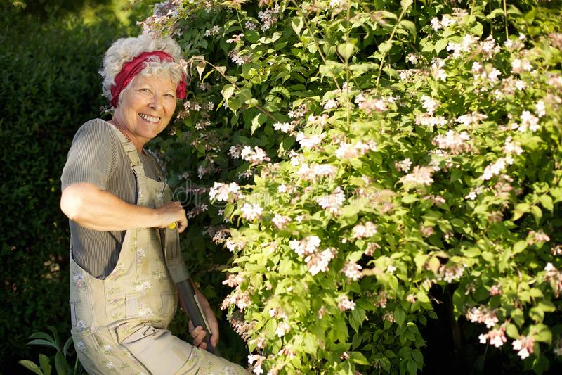 Une femme plus âgée faisant du jardinage dans l'arrière-cour photo libre de droits