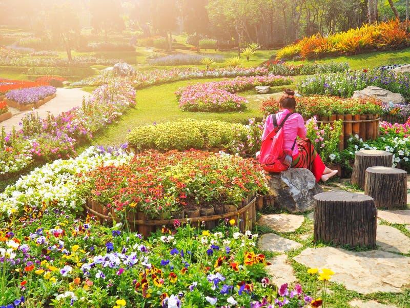 Une femme s'asseyent sur une roche She's prenant des photos dans le beau jardin Matin d'It's images stock