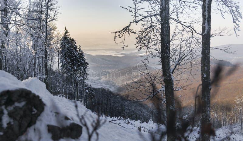 Une fenêtre au monde, Slovaquie photographie stock libre de droits