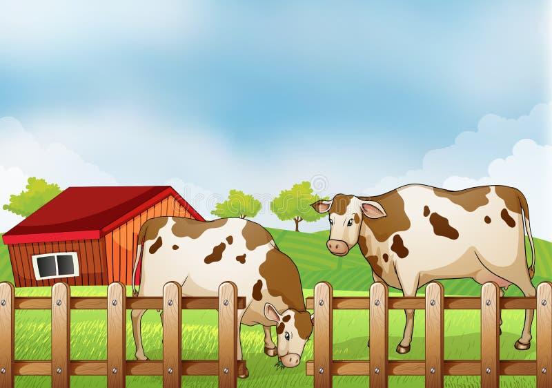 Une ferme avec deux vaches à l'intérieur de la barrière illustration de vecteur