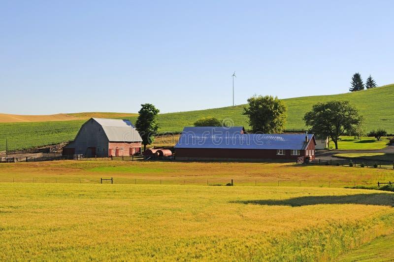 Une ferme dans Palouse photos stock