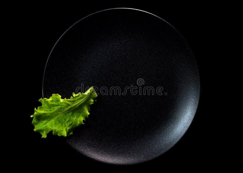 Une feuille verte de laitue photos libres de droits