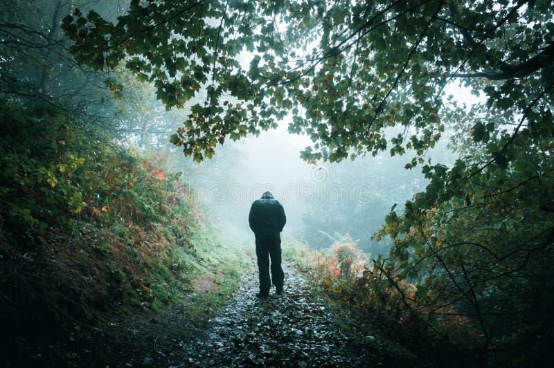Une figure à capuchon triste marchant à partir de la caméra sur une région boisée brumeuse photos libres de droits