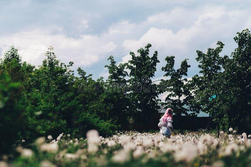 Une fille court à travers un champ des pissenlits en été photos stock